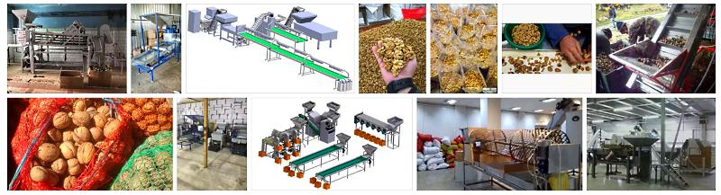 Промышленность и грекий орех