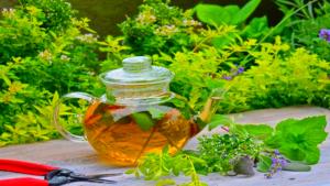 8 целебных трав на вашей даче