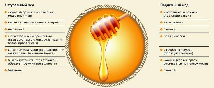 Натуральный и поддельный мёд