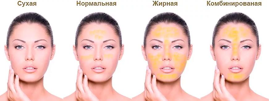 Жирная, сухая и комбинированная кожа лица