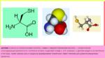 Аминокислота цистеин: значение, польза, содержание в продуктах